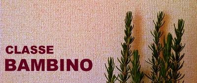 BAMBINO logo.jpg